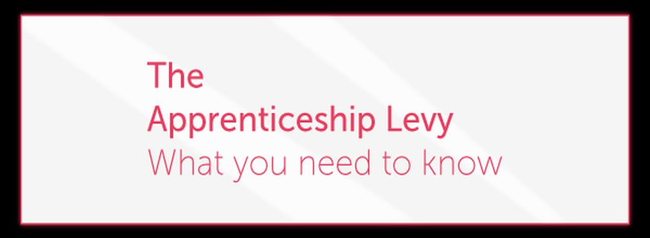 So how does the Apprenticeship Levywork?