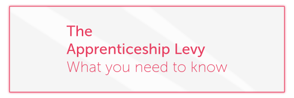 So how does the Apprenticeship Levy work?